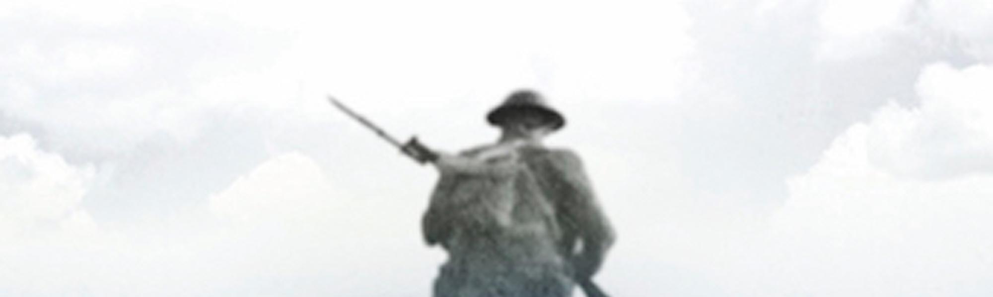 A soldier standing in a poppy field