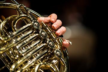 de Havilland Philharmonic Orchestra: Czech Classics