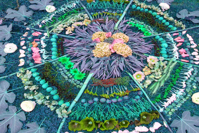 Create a Digital Nature Mandala